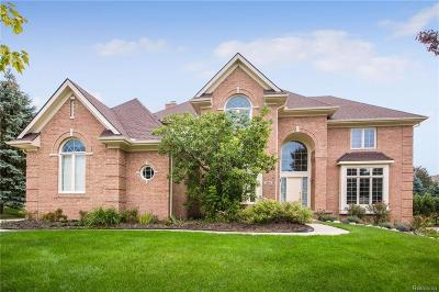 Rochester Hills Single Family Home For Sale: 1964 Blue Grass Crt