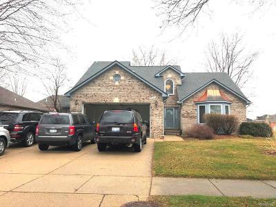 Sterling Heights Single Family Home For Sale: 4641 Bayleaf Dr