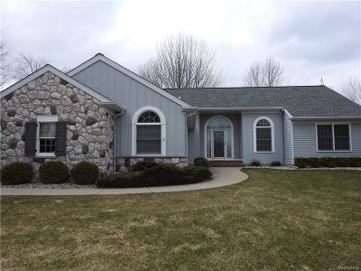 Lapeer Single Family Home For Sale: 3126 Rochester