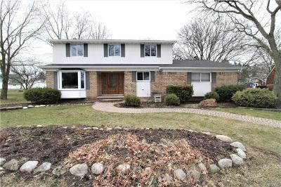 Farmington Hills Single Family Home For Sale: 20972 Eastfarm