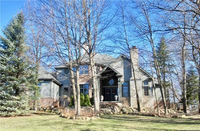 Lapeer Single Family Home For Sale: 1780 Arlington Crt
