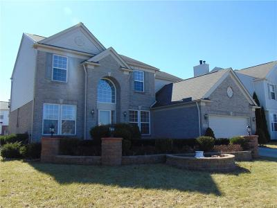 Shelby Twp Single Family Home For Sale: 7262 N Central Park