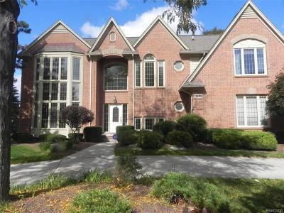 Rochester Hills Single Family Home For Sale: 3806 Rosewood Ln