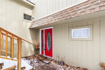 West Bloomfield Single Family Home For Sale: 7132 Colony Dr