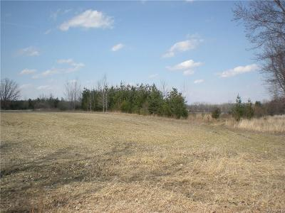 Lapeer Residential Lots & Land For Sale: Bowers Rd