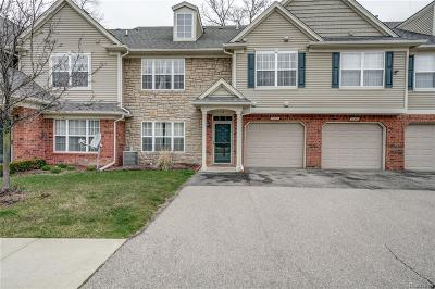 Shelby Twp Condo/Townhouse For Sale: 11387 N Woods Dr