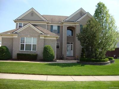 Sterling Heights Single Family Home For Sale: 42608 Beechwood Dr