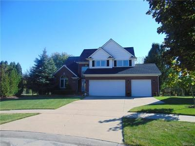 Macomb Single Family Home For Sale: 8768 Frederick Dr