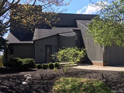 Rochester Hills Single Family Home For Sale: 3379 Edmunton Dr