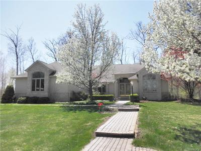 Lake Orion Single Family Home For Sale: 3649 Orion Oaks Dr