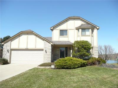 Macomb Single Family Home For Sale: 43639 Sunnypoint Dr