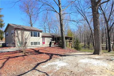 Macomb Single Family Home For Sale: 41528 Utica Rd