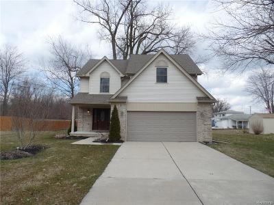 Clinton Township Single Family Home For Sale: 22977 Quinn Rd