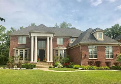 Macomb Single Family Home For Sale: 6069 Academy Dr