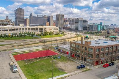 Detroit Residential Lots & Land For Sale: 1241 W Elizabeth St