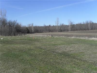 Lapeer Residential Lots & Land For Sale: 872 Columbiaville Rd