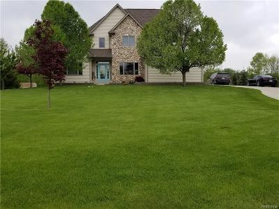 Lapeer Single Family Home For Sale: 3162 Autumn View Ln