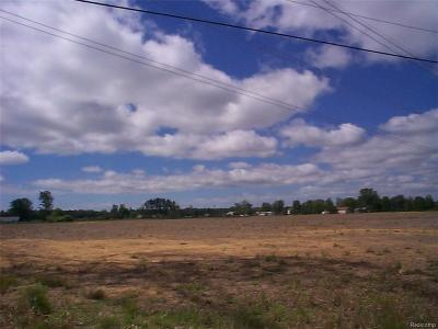 Residential Lots & Land For Sale: Belle River #1 Rd