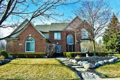 Rochester Single Family Home For Sale: 1420 Tulberry