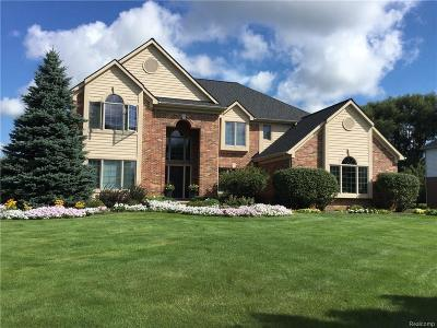 Clarkston Single Family Home For Sale: 8440 Peaceful Valley