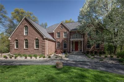 Clarkston Single Family Home For Sale: 260 Hawk Ridge Dr