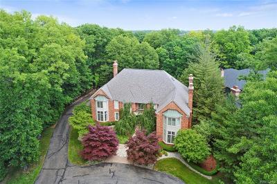 Bloomfield Hills Single Family Home For Sale: 1750 Heron Ridge
