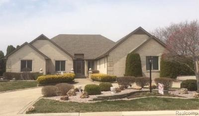 Clinton Township Single Family Home For Sale: 40467 Emerald Ln W