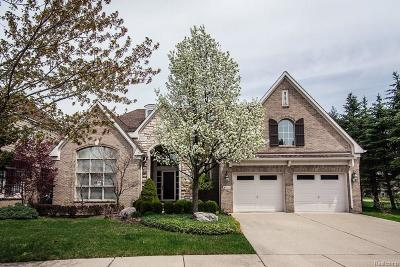 Troy Condo/Townhouse For Sale: 4020 Chatfield Ln