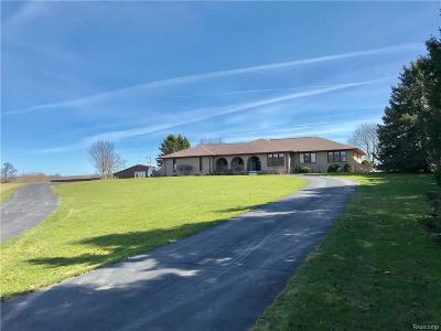 Lapeer Single Family Home For Sale: 4100 Dryden Rd