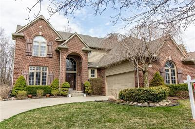 Northville Single Family Home For Sale: 18190 Cascade Dr