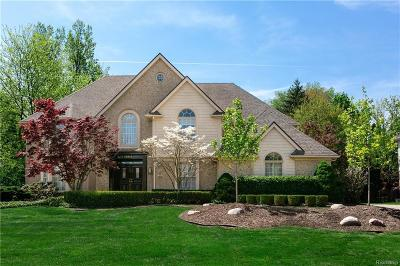 Farmington Hills Single Family Home For Sale: 38051 Turnberry Crt