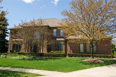 Northville Single Family Home For Sale: 17285 Willow Ridge Crt