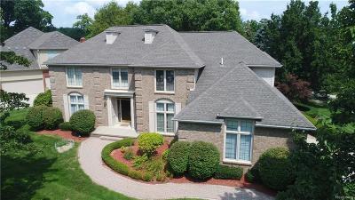 Troy Single Family Home For Sale: 2386 Oak Ridge