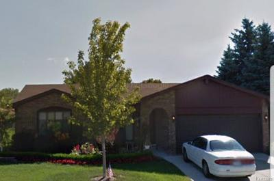 Clinton Township Single Family Home For Sale: 40378 Eschenburg Dr