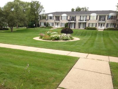 Bloomfield Hills Condo/Townhouse For Sale: 100 W Hickory Grove Rd