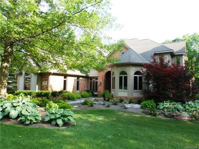 Clarkston Single Family Home For Sale: 9285 Lake Ridge Dr