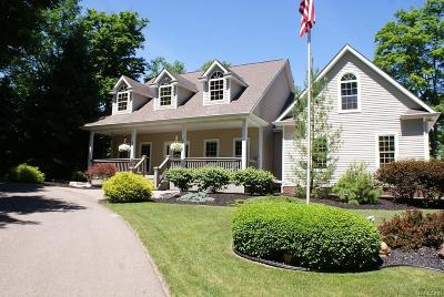 Lapeer Single Family Home For Sale: 4108 Waterland Dr