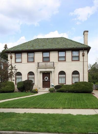 Detroit Single Family Home For Sale: 17554 Birchcrest Dr