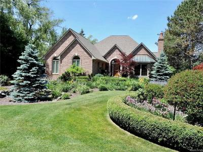 Lake Orion Single Family Home For Sale: 294 Cayuga Rd