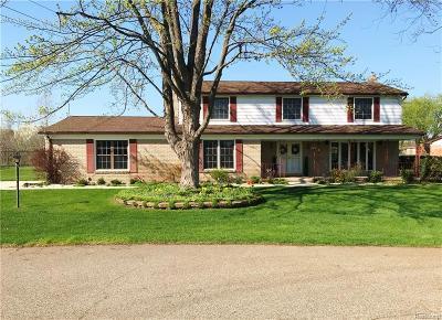 Shelby Twp Single Family Home For Sale: 4161 Snoal Lane