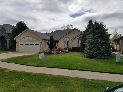 Macomb Single Family Home For Sale: 46103 Butte Dr