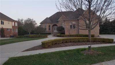 Washington Single Family Home For Sale: 6084 Adams Crt