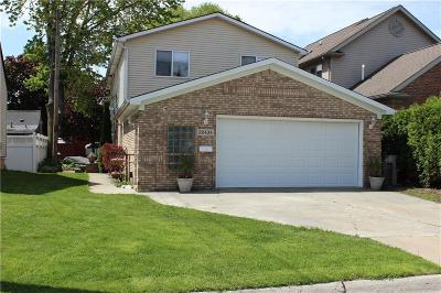 Saint Clair Shores Single Family Home For Sale: 22434 Beach St