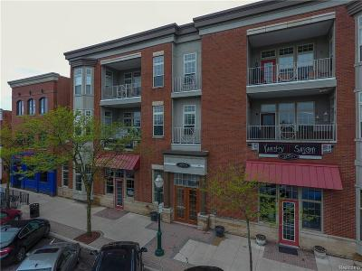 Plymouth Condo/Townhouse For Sale: 855 Penniman#203 Ave