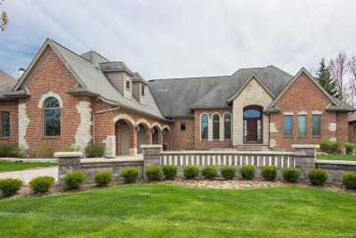 Clarkston Single Family Home For Sale: 5015 Rockaway Lane Ln