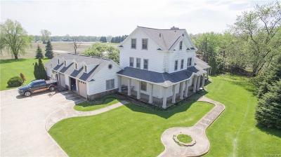 Belleville Single Family Home For Sale: 42961 S Interstate 94 Service Dr