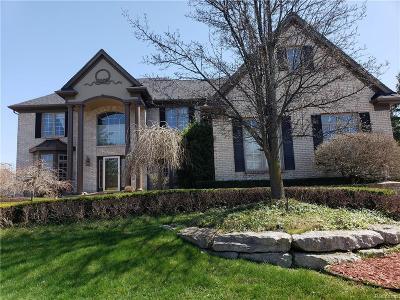 Northville Single Family Home For Sale: 48641 Stoneridge
