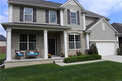Clinton Township Single Family Home For Sale: 43612 Grouse Dr