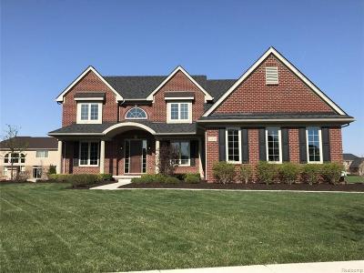 Northville Single Family Home For Sale: 22835 Poppleton Dr