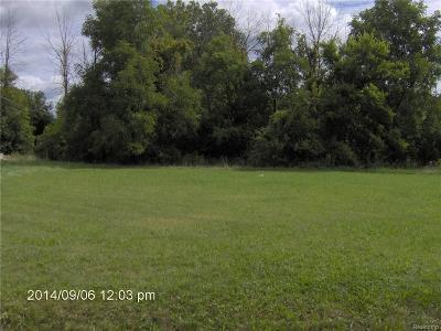 Clinton Township Residential Lots & Land For Sale: 9999 Charles